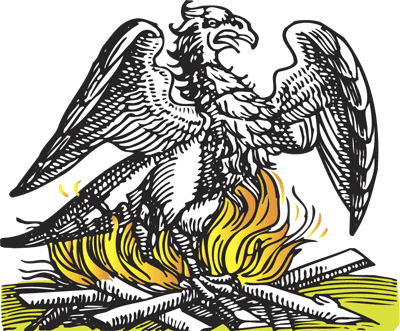 phoenix-rising-72
