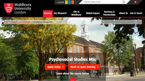 New Psychosocial Studies Program